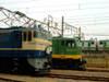 Dscf0919